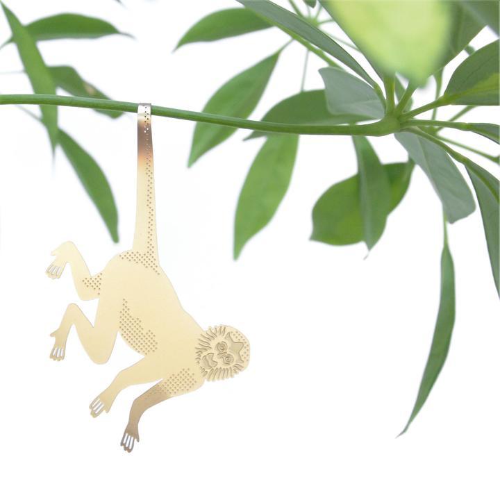 Plant Animal Monkey - Another Studio
