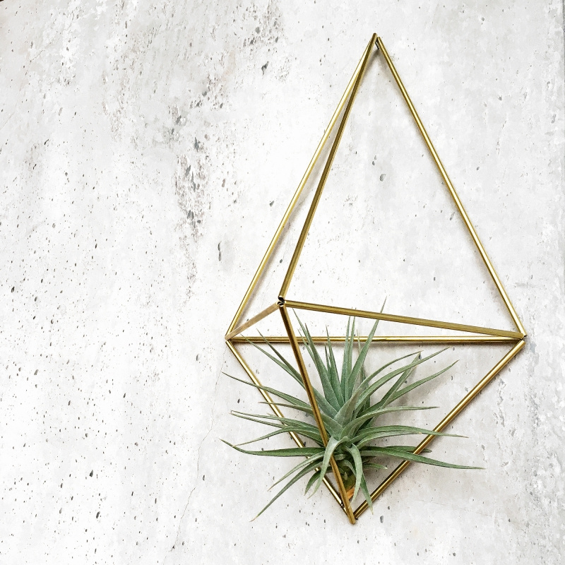 DIY wall planter Facet - Draadzaken