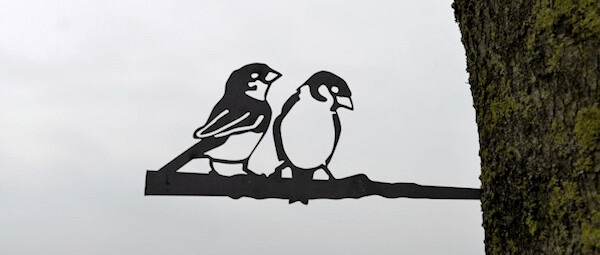 Birdwise