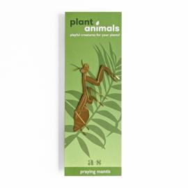 Planten diertje bidsprinkhaan