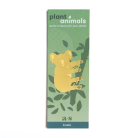 Planten diertje koala