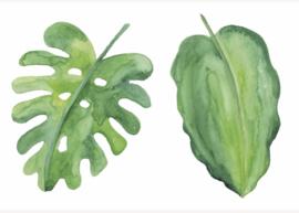 Esque   Poster   Groene bladeren Botanisch   Backorder