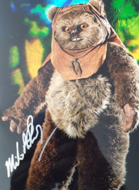 Micheal Henbury - Ewok Star Wars