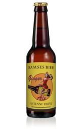 Ramses - Antenne Ginger