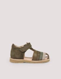 Rainbow sandal, Moss | Petit Nord