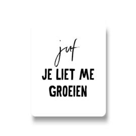 5 stickers - juf je liet me groeien