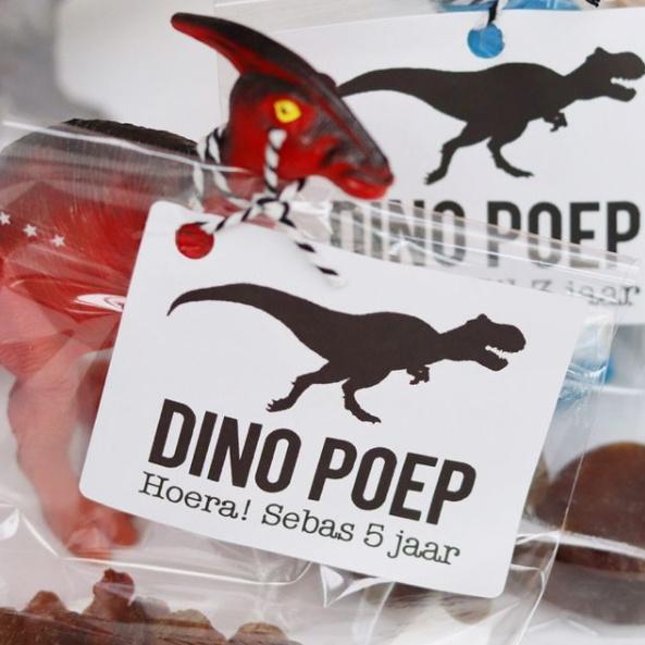 5 naamstickers - dino poep