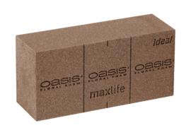 OASIS® BIO Floral Foam Blok - 1 stuk