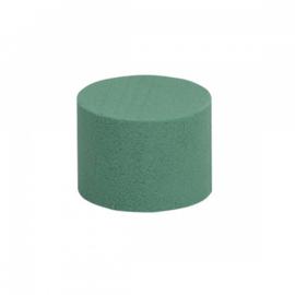 OASIS® IDEAL Cylinder 8cm - 20 stuks