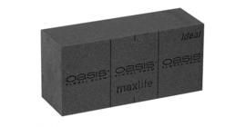 OASIS® Black Ideal - 1 stuk
