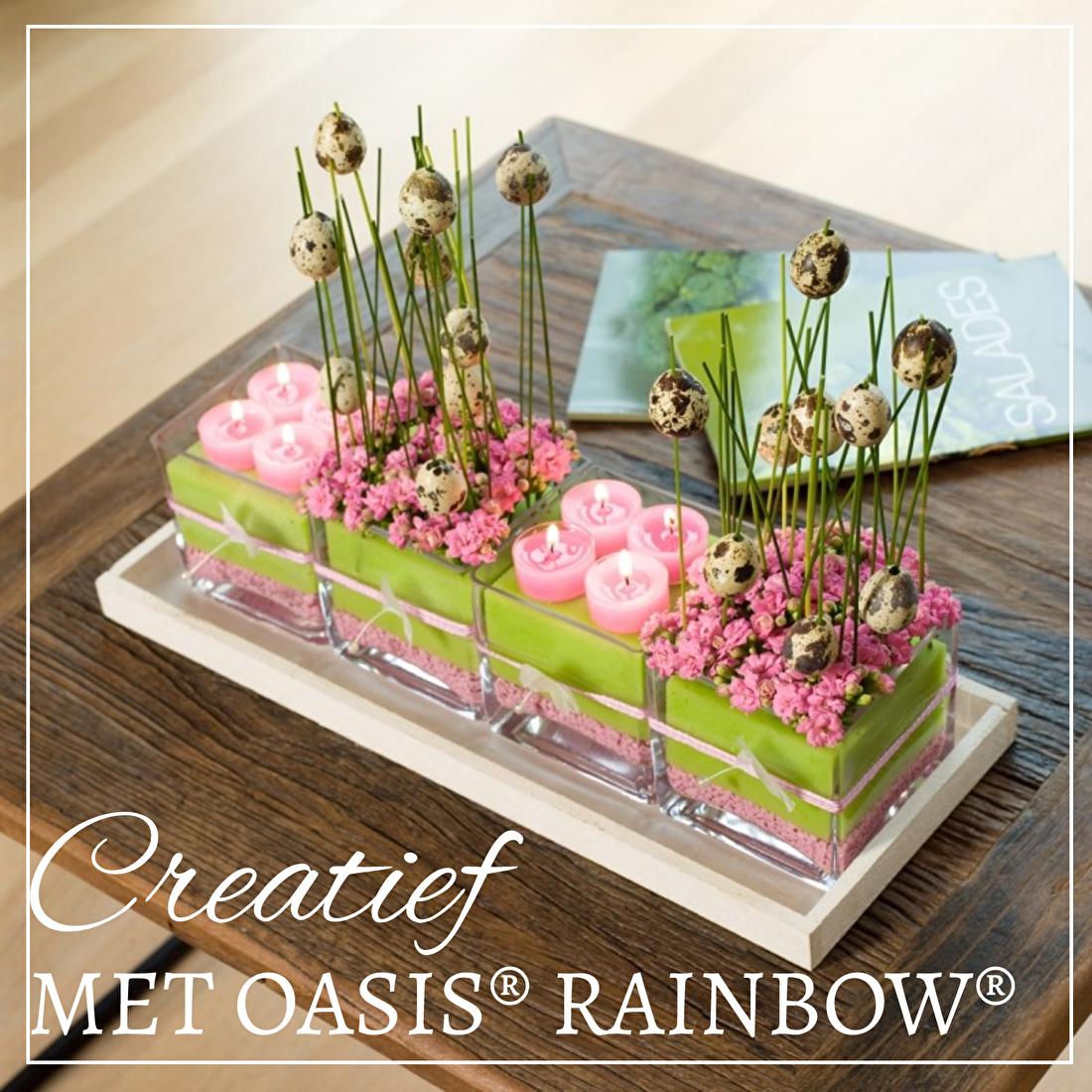 Oasis Rainbow
