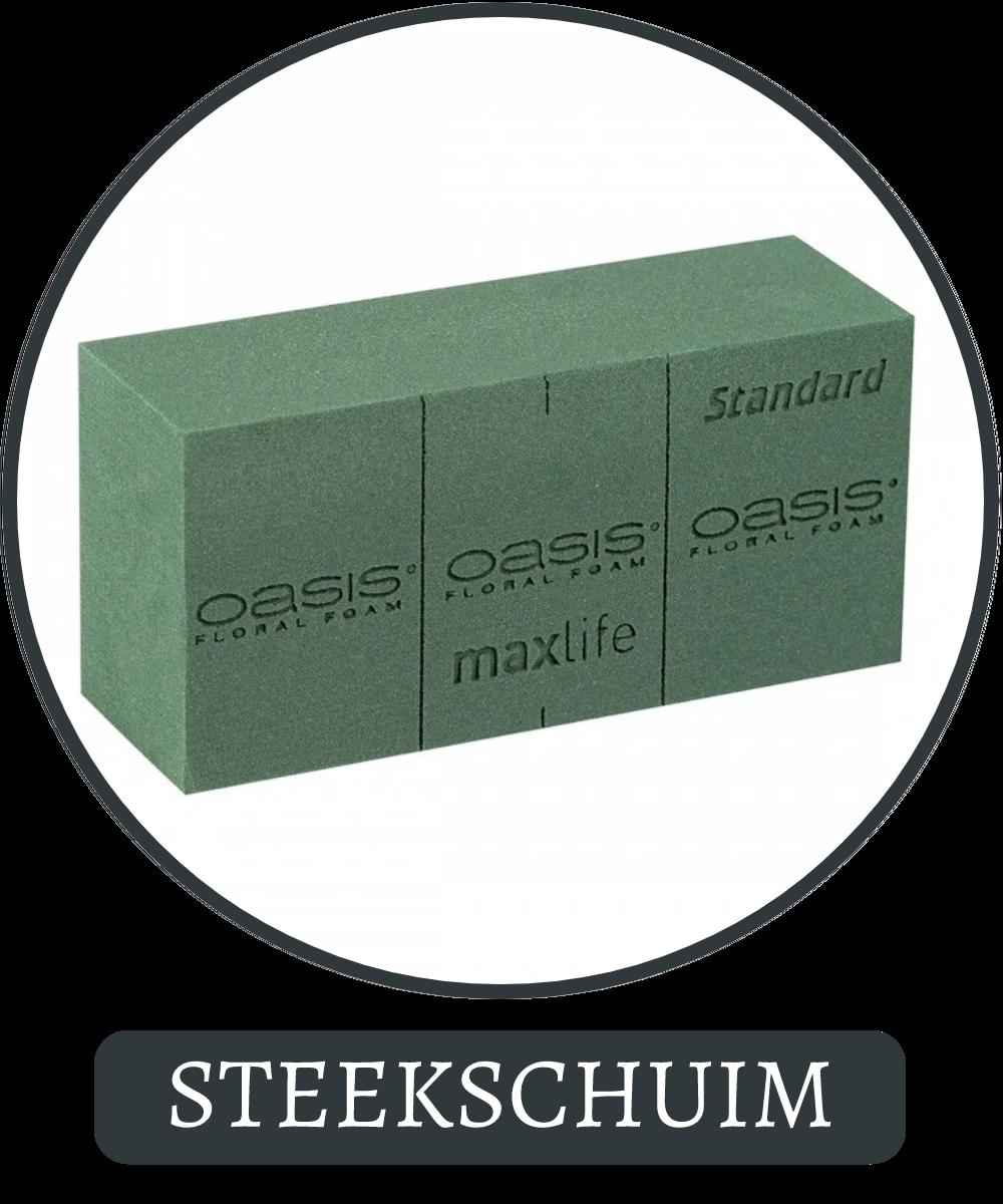 Oasis Steekschuim