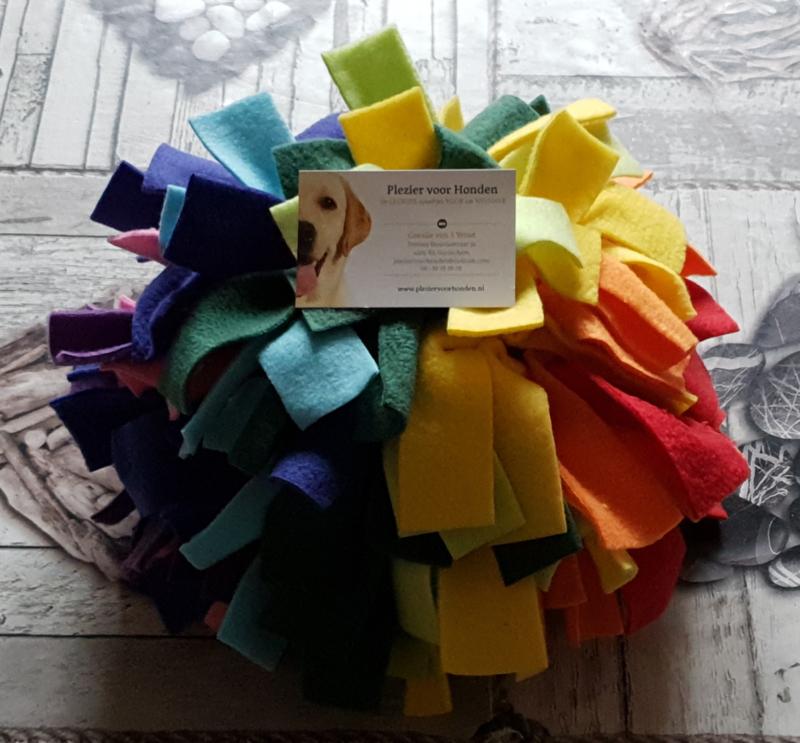 Regenboog Snuffelbal Medium