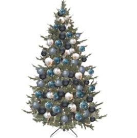 Kerstboom | Stockholm