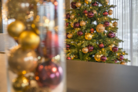 Kerstboom | Parijs
