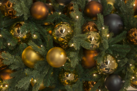 Kerstboom | Praag
