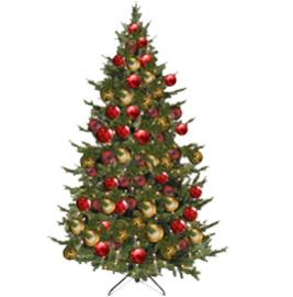 Kerstboom | Barcelona