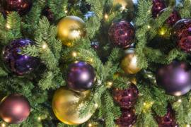 Kerstboom | Venetië