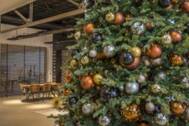 Kerstboom | Berlijn