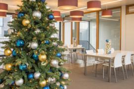 Kerstboom | Wenen