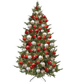 Kerstboom 215cm