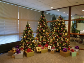 Bundelpakket kerstbomen