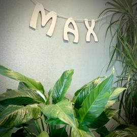Naamslinger Max