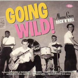 Going Wild! Music City Rock 'n Roll