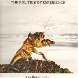 The Politics Of Experience – Gryllotalpidae