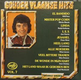 Gouden Vlaamse Hits Vol. 7