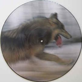 Dave Clarke – The Wolf