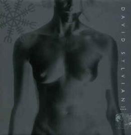 David Sylvian – Pop Song