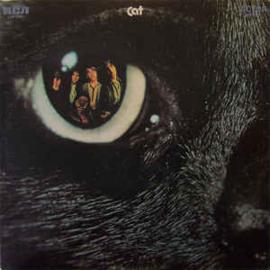 Cat – Cat
