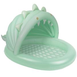 Zwembadje: Dino