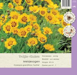VIPS Coreopsis grandiflora 'Sunfire'