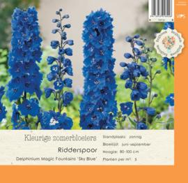 VIPS Delphinium Magic Fountains 'Sky Bleu'