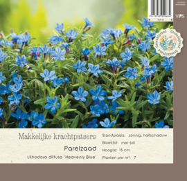 VIPS Lithodora diffusa 'Heavenly Blue'