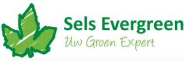 Sels Evergreen
