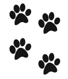 Vloersticker beren voetstappen