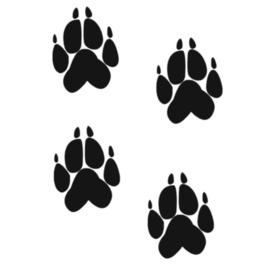 Vloersticker hond/wolf voetstappen