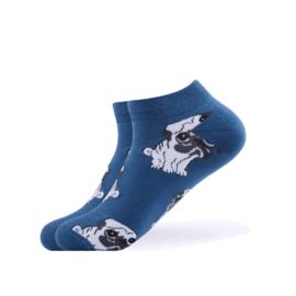 Vrolijke Sokken Hond Maat 36-40