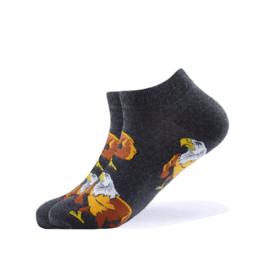Vrolijke Sokken Adelaar Maat 36-40