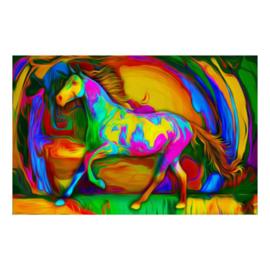 Dier. Colorfull  paard 30 x 40 cm full