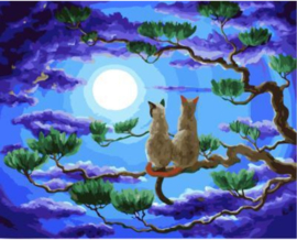 Dier Cats looking the moon 30 x 40 cm full