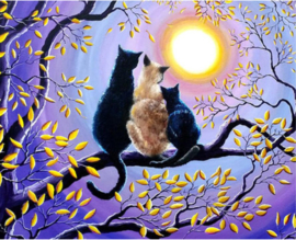 Dier Cats looking at the moon 30 x 40 cm full