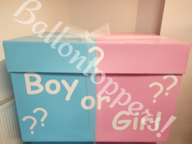 Gender Reveal- BOX XXL Boy or Girl?