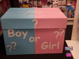 Gender Reveal- XXL Box
