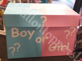 Gender Reveal- BOX XXL Boy or Girl?