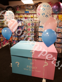 Gender Reveal- BOX XXL Blue or Pink?