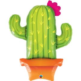 Folie- Cactus